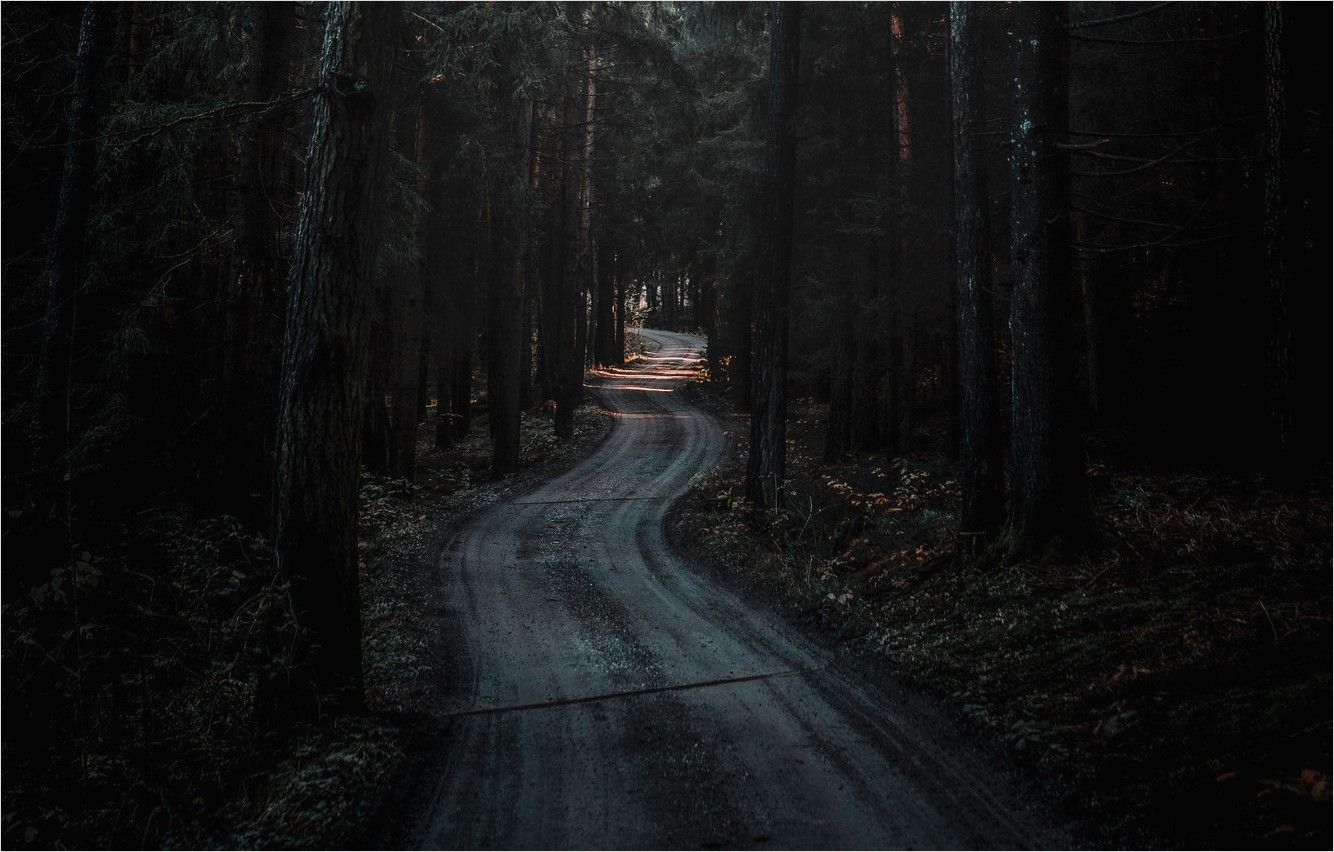 4k Dark Color Road Wallpapers In 2020 Forest Road Dark Wallpaper Nature Desktop
