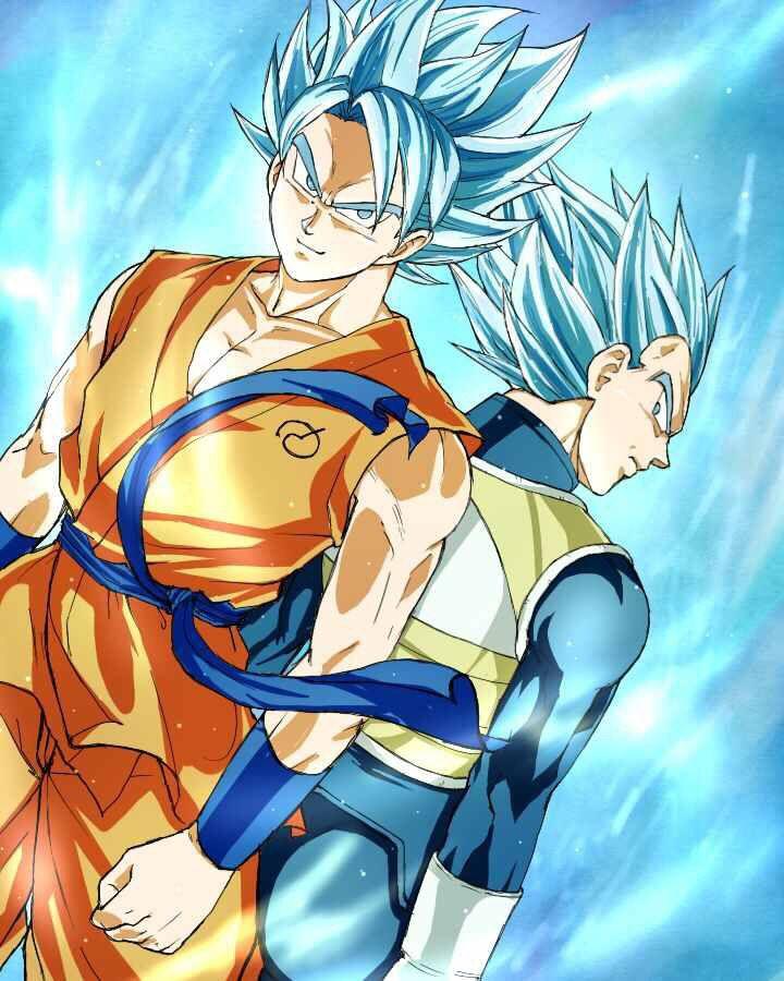 Goku And Vegeta Super Saiyan Gods Dragon Ball Fotos Dragon Ball