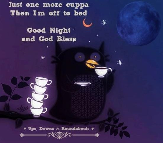 Pin By Katie Casavant On Days Mornings Nights Months Weekends Night Owl Quotes Owl Quotes Good Night Quotes