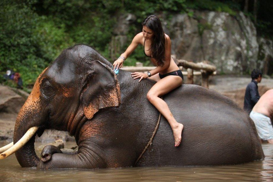 Beautiful nude woman riding an elephant, nude pictures lisa ray