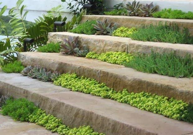 Escadas No Jardim…!!!