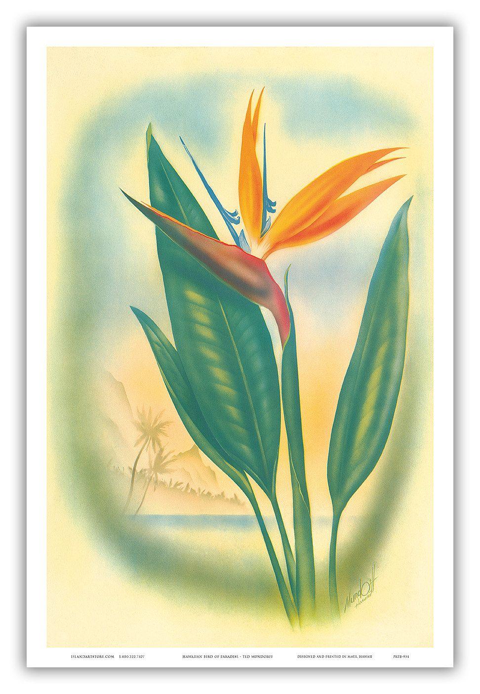 12in x 18in Vintage Hawaiian Art Poster Print - Bird of Paradise ...