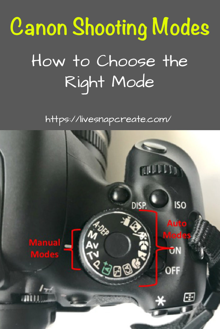 What mode should you use on your Canon DSLR?  This article explains all the modes and what settings you control in each mode.  #livesnapcreate #DSLRphotography #photography