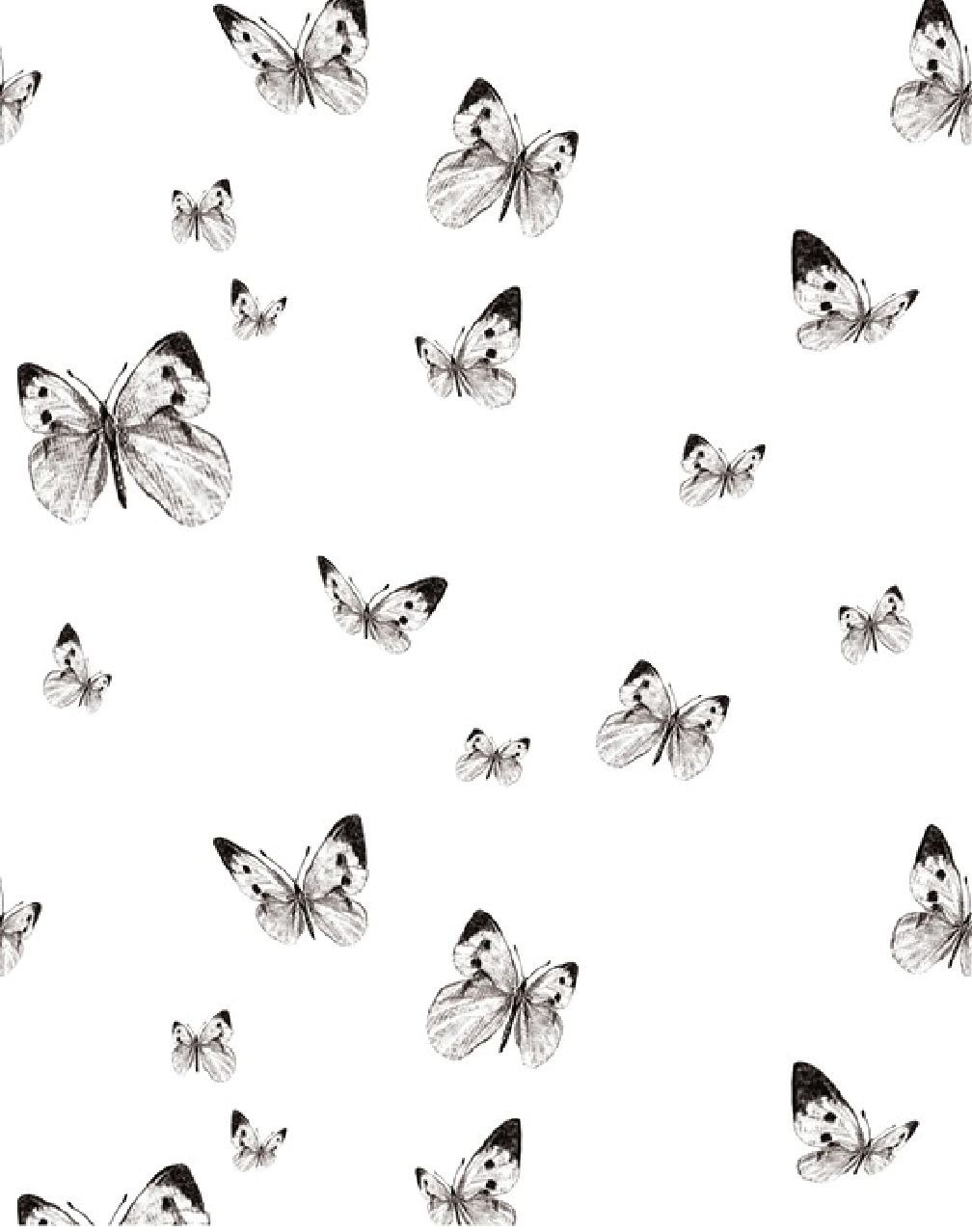 Butterfly Valley White Black Butterfly Black And White Black And White Aesthetic Butterfly Wallpaper Iphone