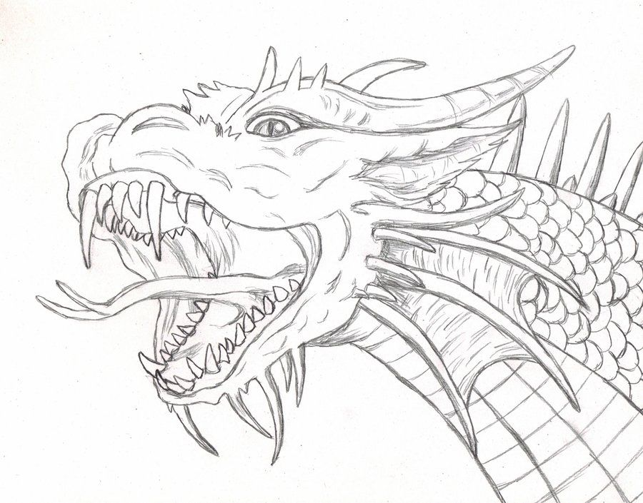 Dragon Scetch Norton Safe Search With Images Dragon Sketch