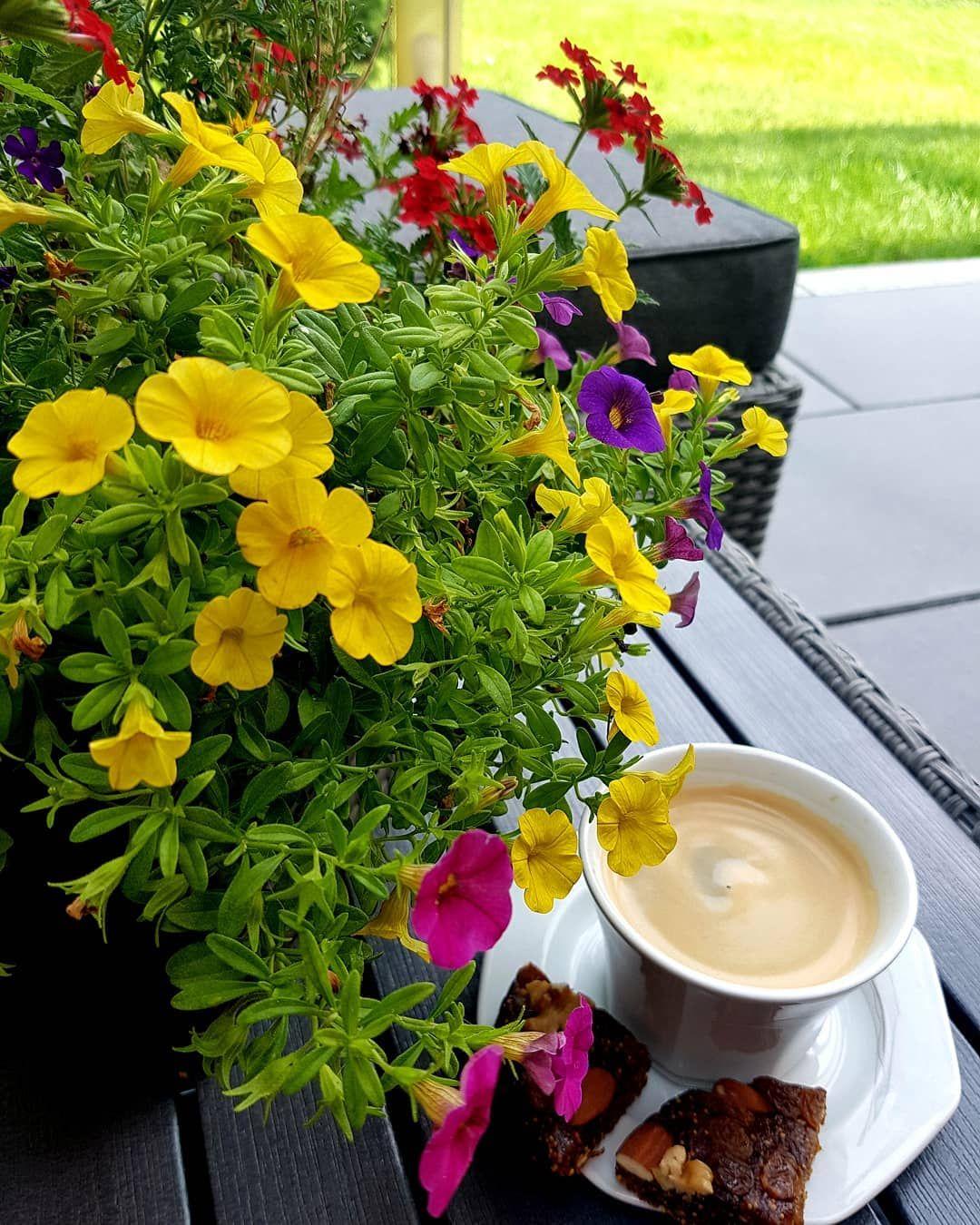 Dzisiejszy Dzien Spiacy Dzien Nastepna Kawa Aby Pomogla Kaffee Kaffetrinken Kaffeegeniessen Kaffezeit Coffeeholic Coffeetime Coffe Garten