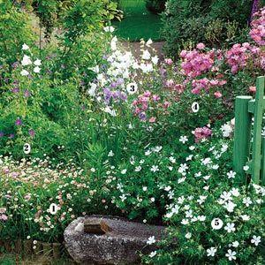 fleurir son jardin au printemps id es de massifs campanule g raniums et romance. Black Bedroom Furniture Sets. Home Design Ideas