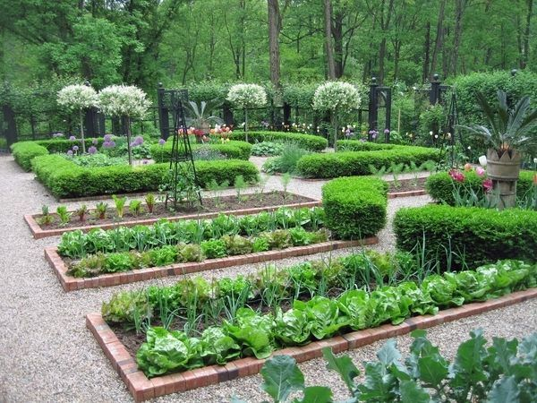 Potager Garden Design Brick Edging Pea Gravel Paths Vegetable