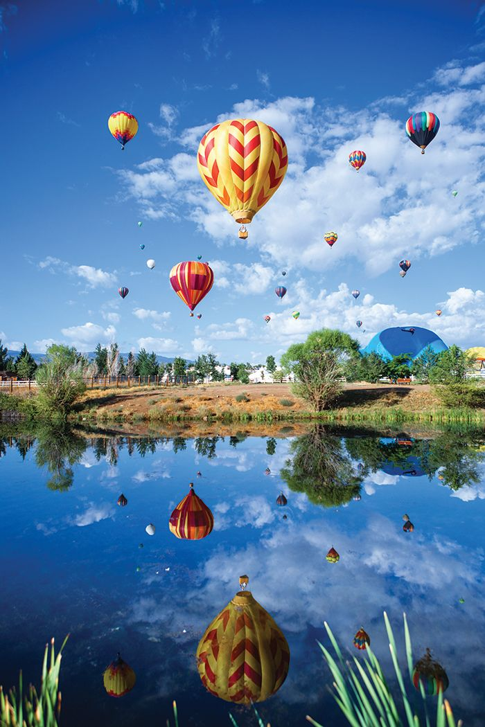 2015 Great Nevada Picture Hunt Balloon race, Balloons