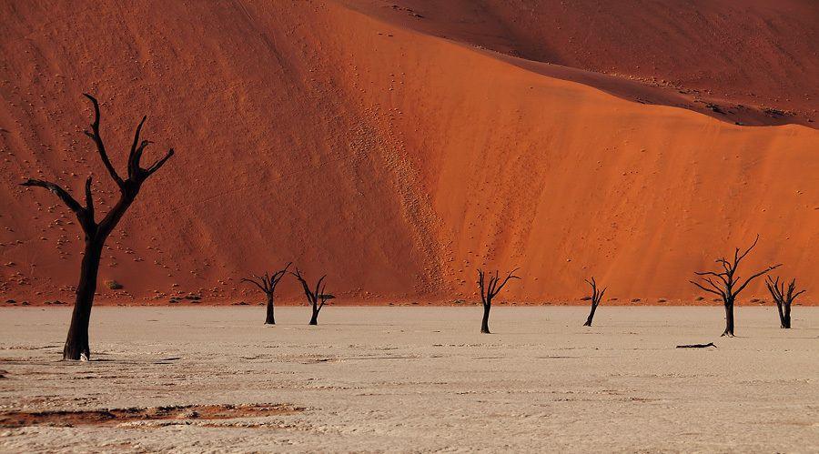Dead Valley. Sossusvlei. by Sam Dobson on 500px