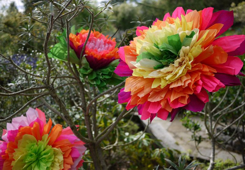 A Combination Of Mexican Paper Flowers And Those Ever So Popular