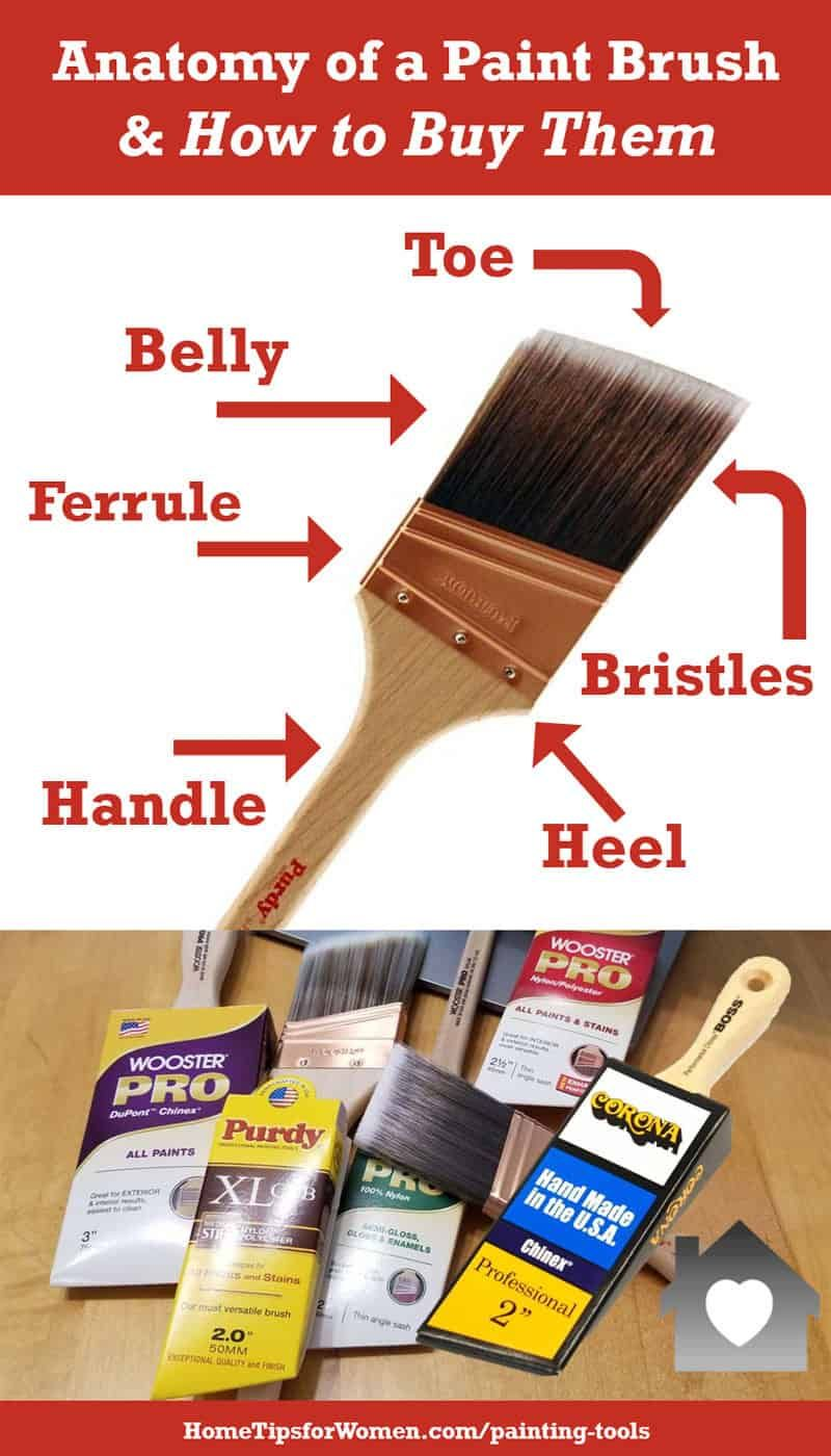 Which Paint Brushes Does A Homeowner Need Paint Brushes Painting Tools Painting