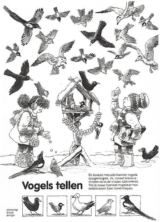 Kleurplaten Wintervogels.Vogels Tellen Thema Winter Vogels Vogel Thema En Winter