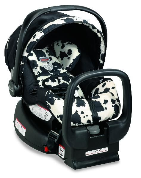 Britax Chaperone Infant Car Seat Cow