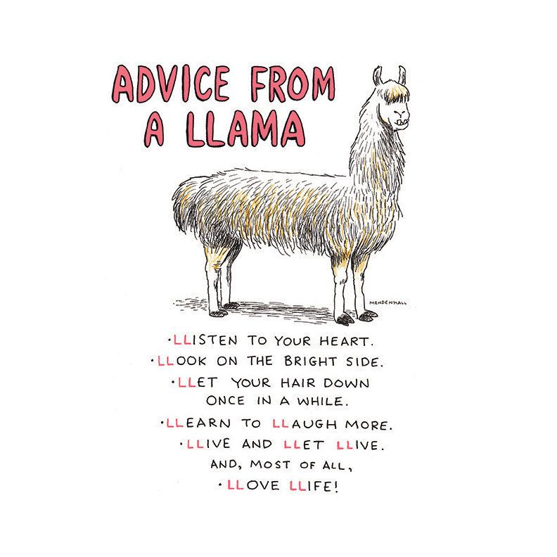 Llamas Quotes Inspirational: Pin By Whitney Brockman On Quotes/Inspiration