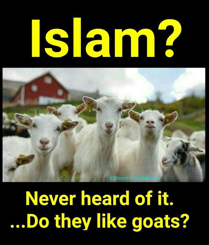 humping goats Muslim