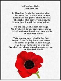 Via Me Me Flanders Field Remembrance Day Poems Remembrance Day Photos