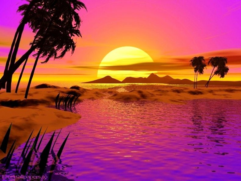 Sunset Beach Animated Desktop Background