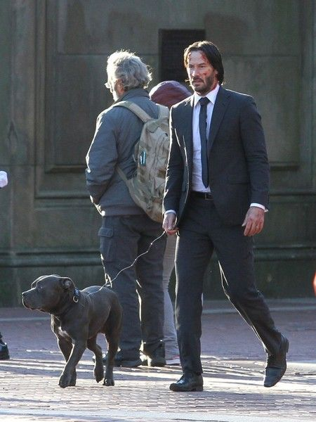 A beat-up, bruised and bloody Keanu Reeves walks with a pitbull on the set  of