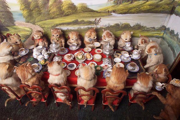 Walter Potter taxidermy in Museum of Everything in London