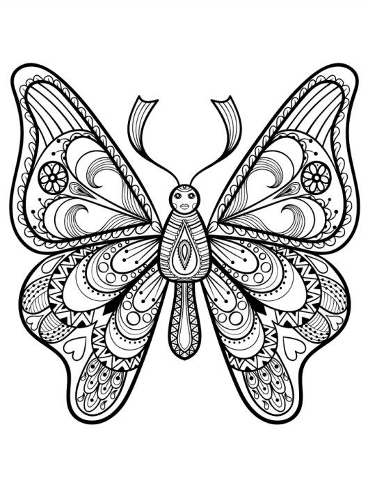 pretty coloring pages for adults with butterflies pic | Adult ...