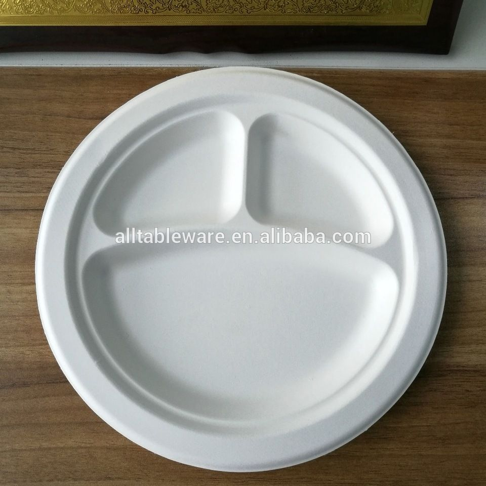 3-Compartment Disposable Tableware Dishes Bagasse Paper Plate 10 ...