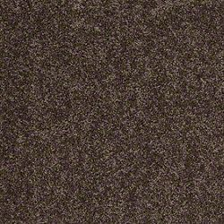 Shaw Carpets Into The Wind Twig Carpet Samples Shaw