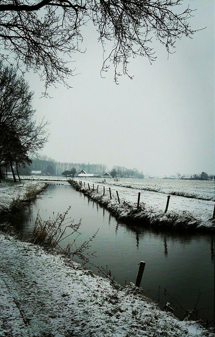 Westenholte