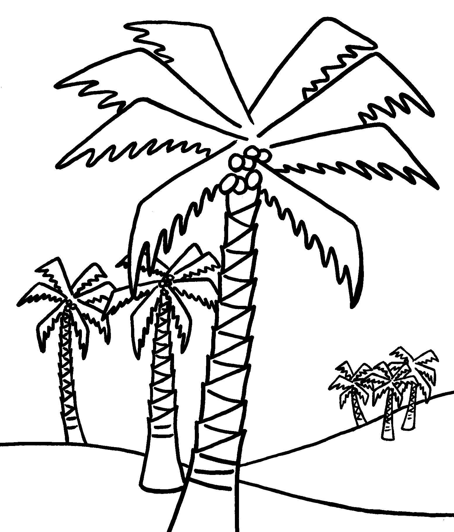 Uncategorized Coconut Tree Coloring Page tree coloring pages kids pinterest free printable kids