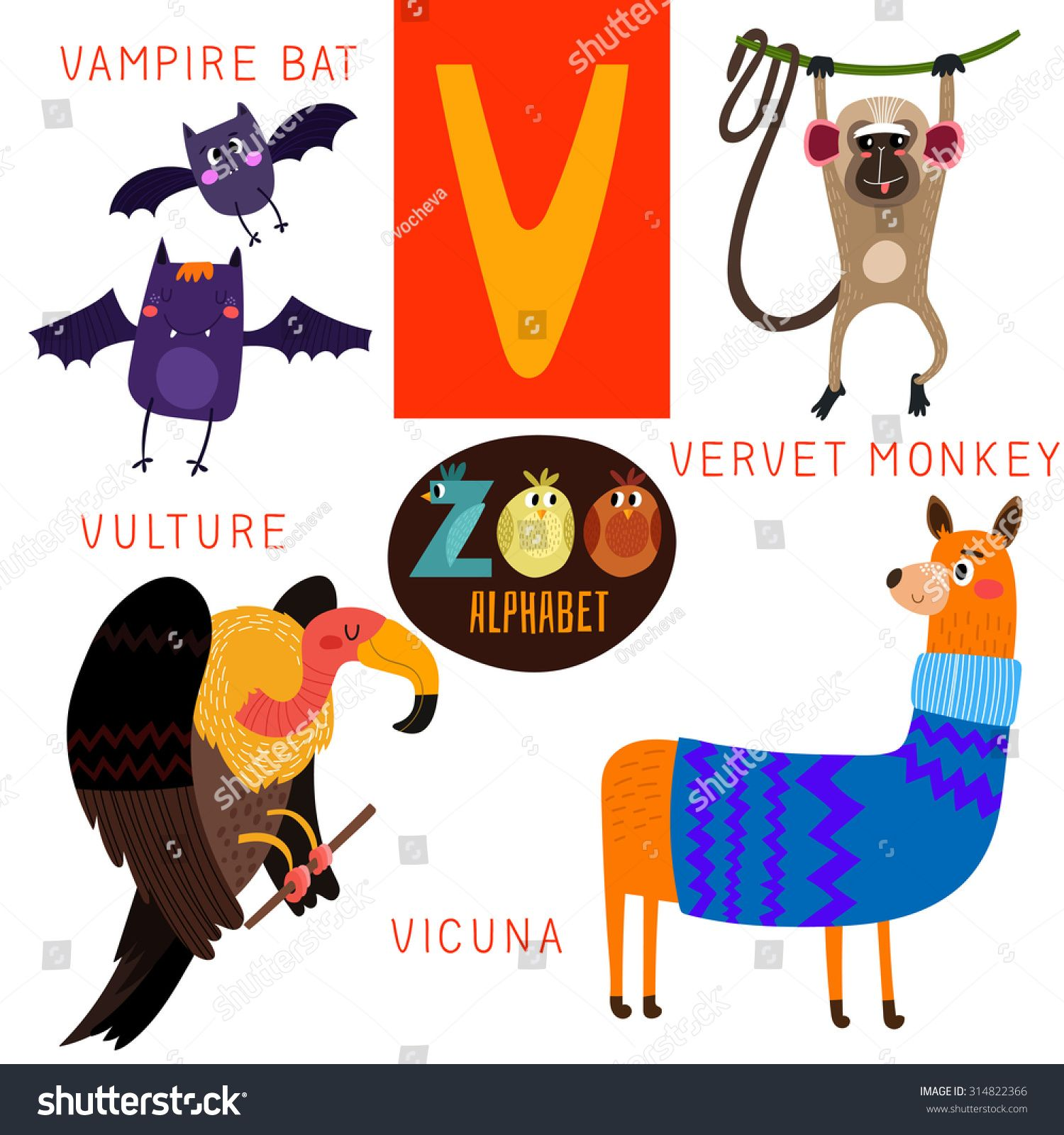 Cute Zoo Alphabet In Vector V Letter Funny Cartoon Animals Vampire Bat Vervet Monkey Vulture Vicuna Alphabet Cute Cartoon Animals Cartoon Animals Vampire Bat