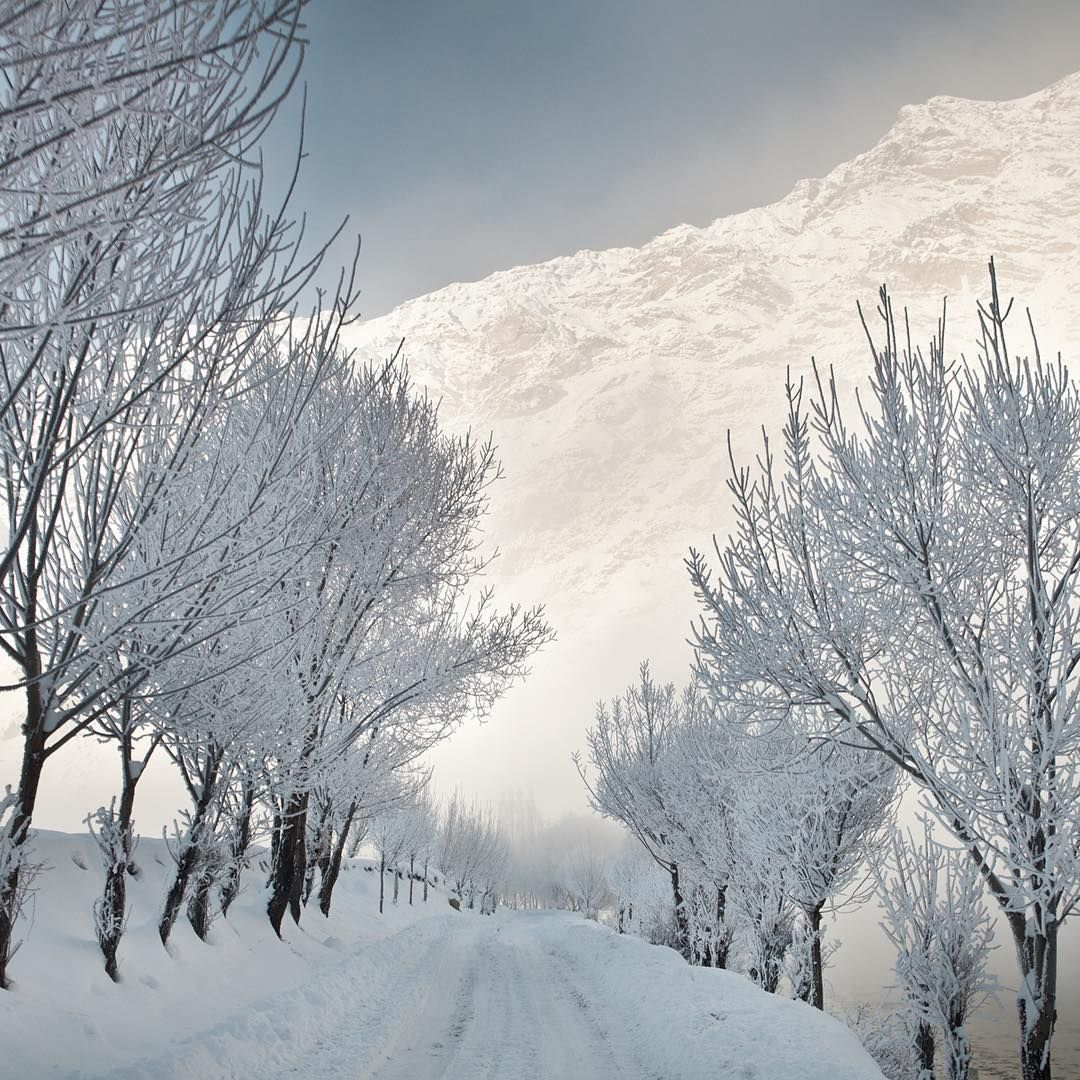 Pin By Com Fe No Turismo On Nature Animals With Images Dushanbe Instagram Winter Pictures