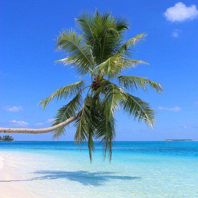 Conrad Rangali Island Maldives Photo Nancyipekoglu Beachday