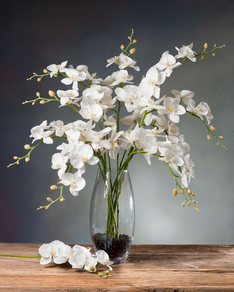 Phalaenopsis orchid silk flower stem cream white floral flower phalaenopsis orchid silk mightylinksfo Image collections