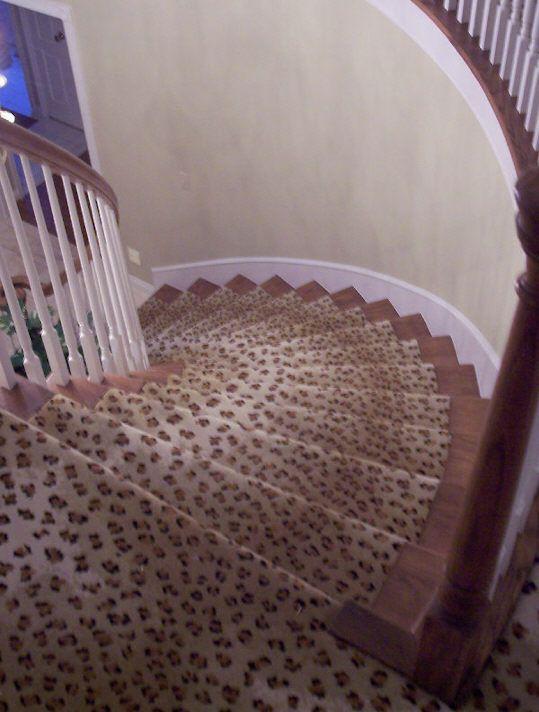 Custom leopard print stair runner things that me go zing for Leopard print carpet stair runner