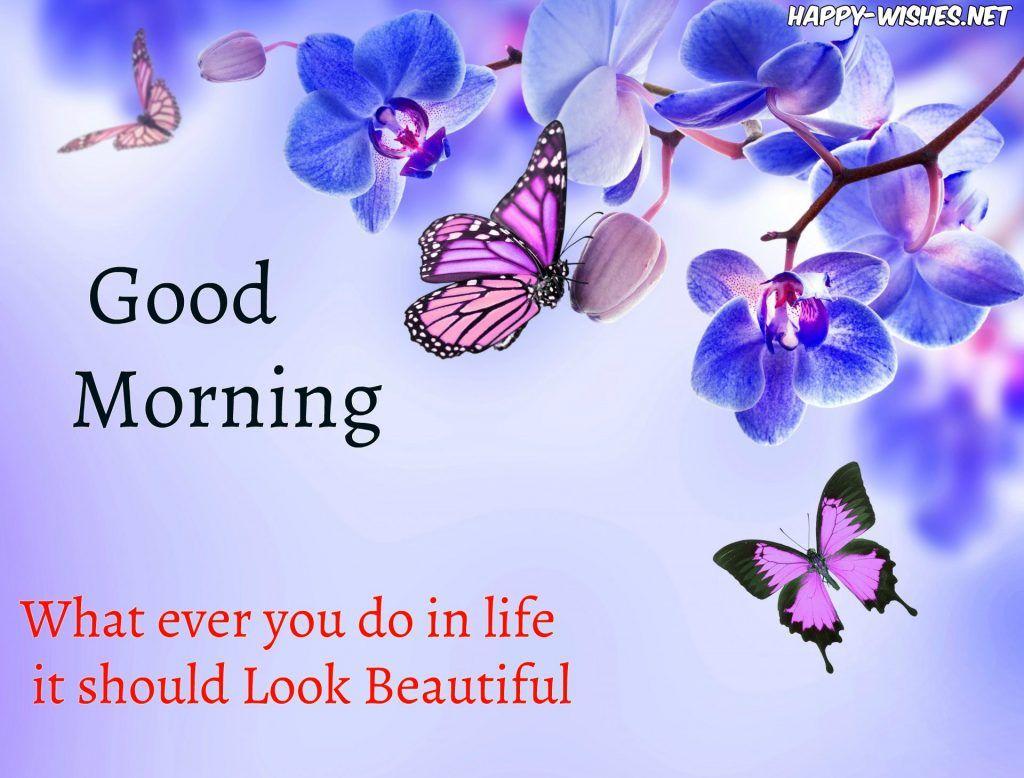 Good Morning Butterfly Wishes Wishing Good Morning Morning Wish