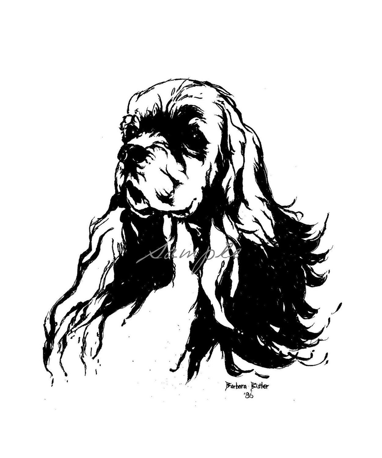 Cocker Spaniel Original Ink Drawing Head Study Show Quality Abstract Signed By Artist Bar Butler 79 00 Via Et Original Ink Drawing Drawing Heads Spaniel Art
