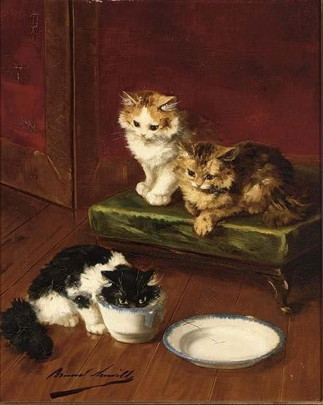 Can Cats Drink Milk? Why Victorian Cats Were Always