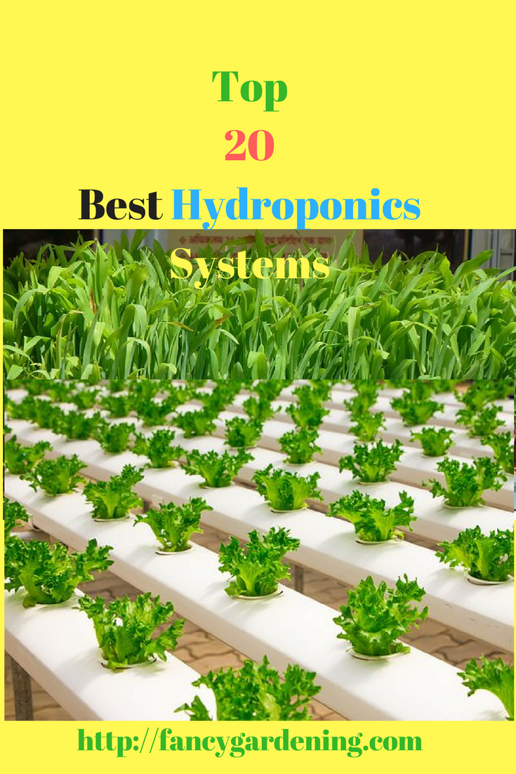 Best Hydroponics Systems 2020 Reviews and Buying Guide