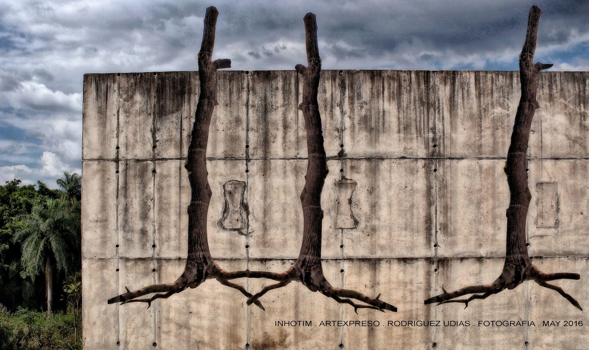 https://flic.kr/p/Go9kMm | INHOTIM . May 2016  25 | Inhotim, Museo y parque ecologico natural. Brumadinho, Minas Gerais. Fotografia: Artexpreso . Rodriguez Udias . *Photochrome Artwork Edition / BH, Brasil . May 2016 .. Website: rodudias.wix.com/artexpreso #Inhotim #artexpreso #photochrome #minasgerais #soubh