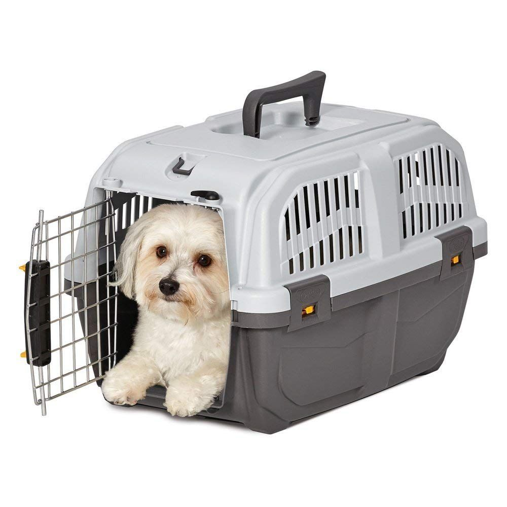 Midwest Homes For Pets Skudo Plastic Carrier Read More Reviews Of The Product By Visiting The Link On The Image This Is An Affi Pet Carriers Cat Cages Pets