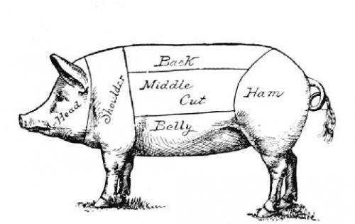 Pig parts | Pig drawing, Pig illustration, Pig diagram