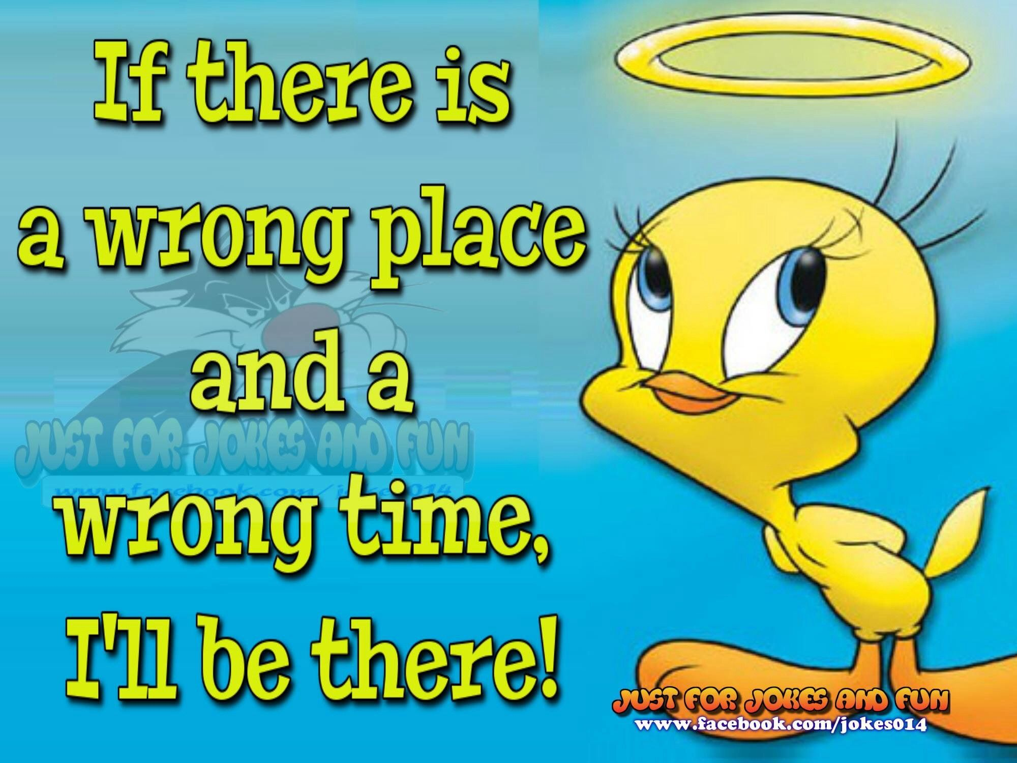 If There S A Wrong Place And Cartoon Jokes Tweety Bird Quotes Funny Cartoons