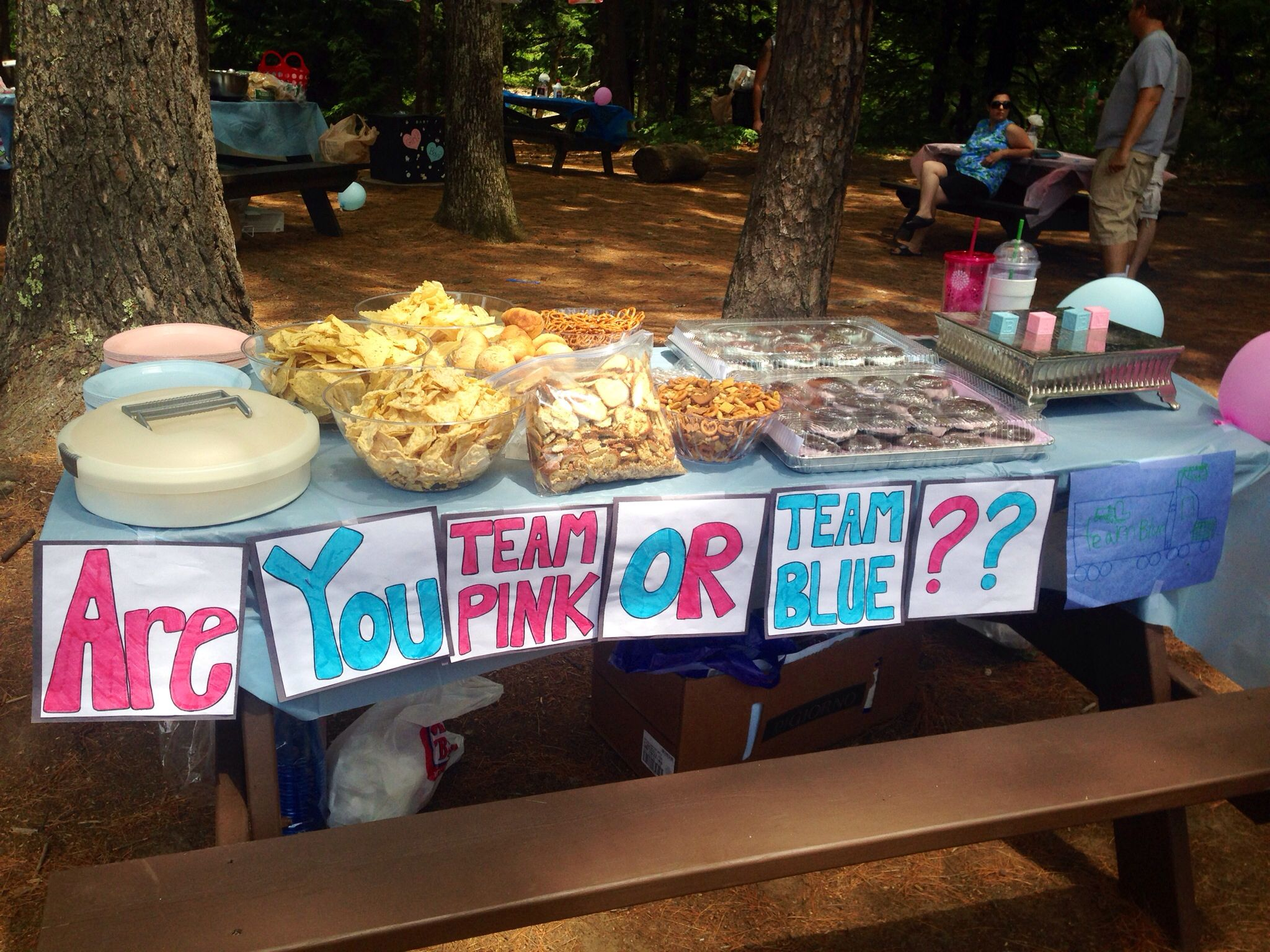 Snack appetizer table at an outdoor gender reveal party Make signs