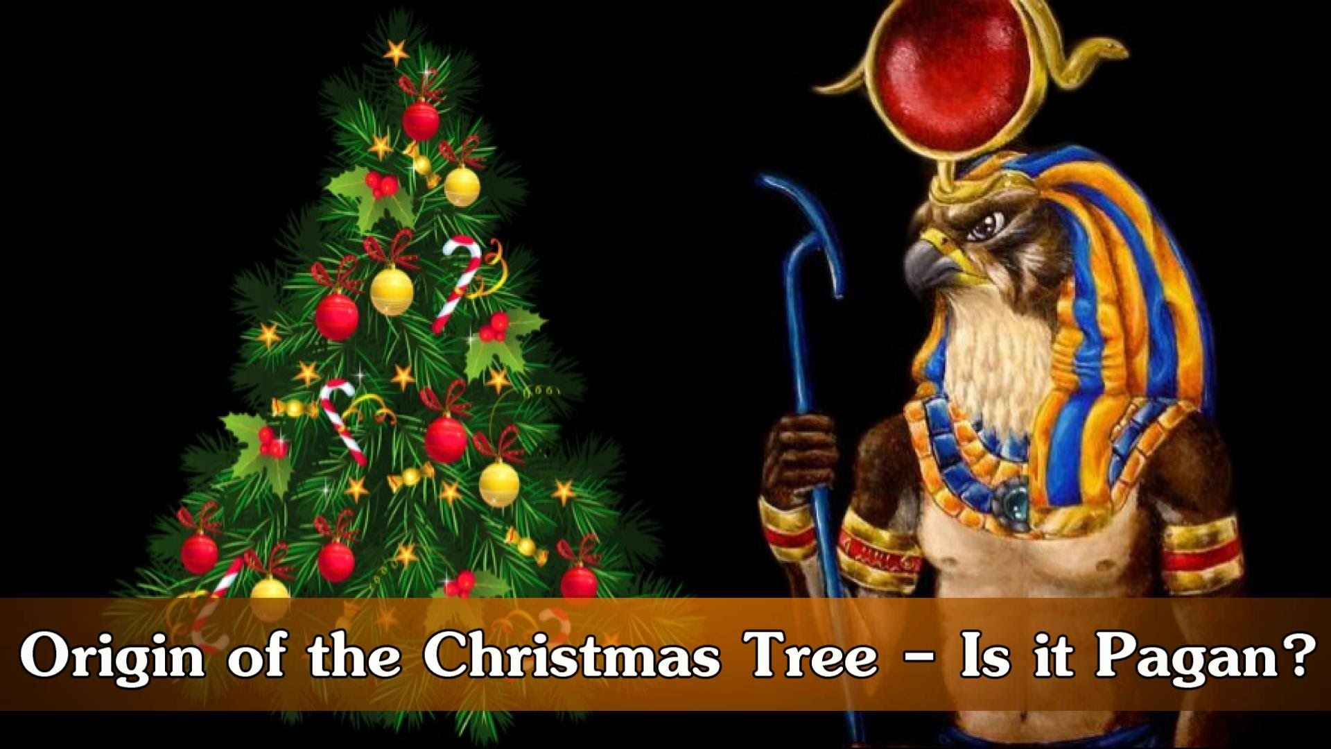 Origin Of The Christmas Tree - Is It Pagan?