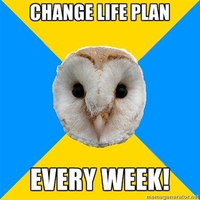 Bipolar Owl - CHANGE LIFE PLAN EVERY WEEK!
