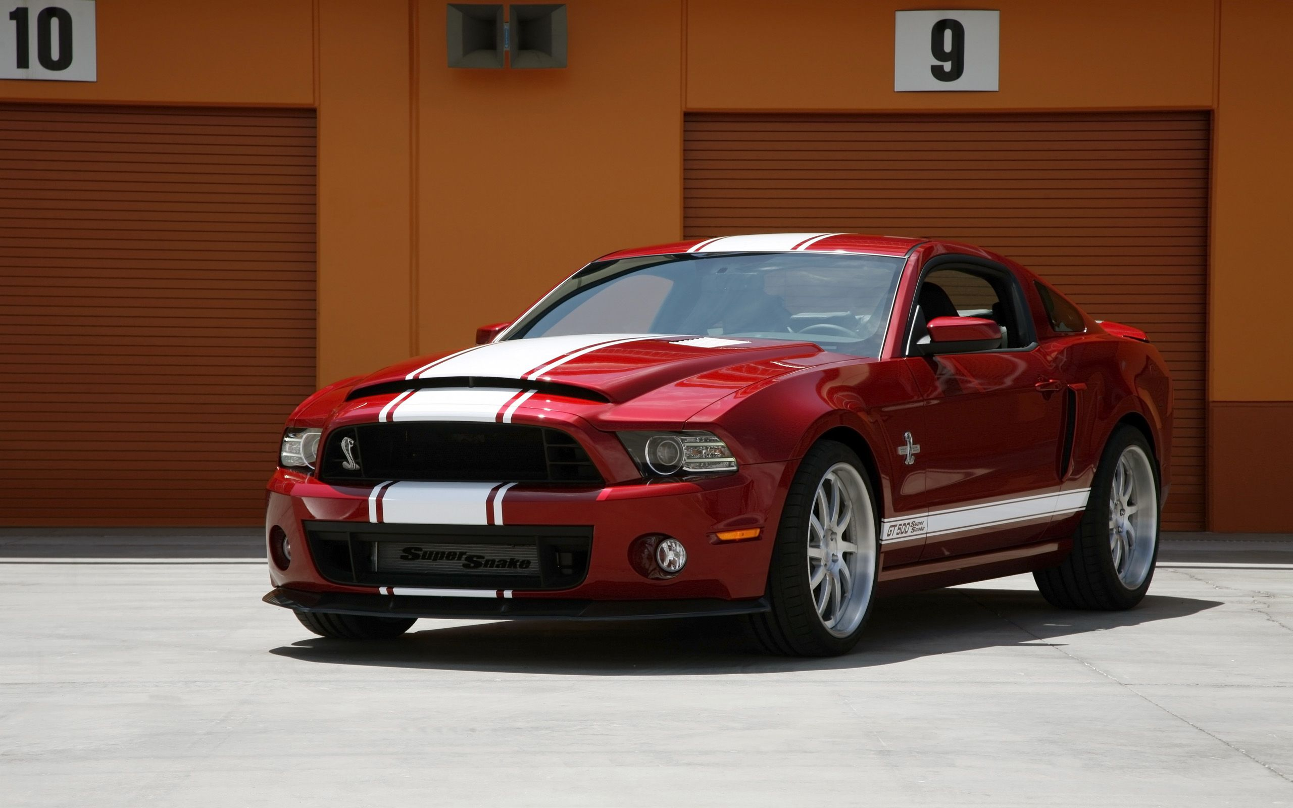 Best ford mustang shelby gt500 super snake wallpapers