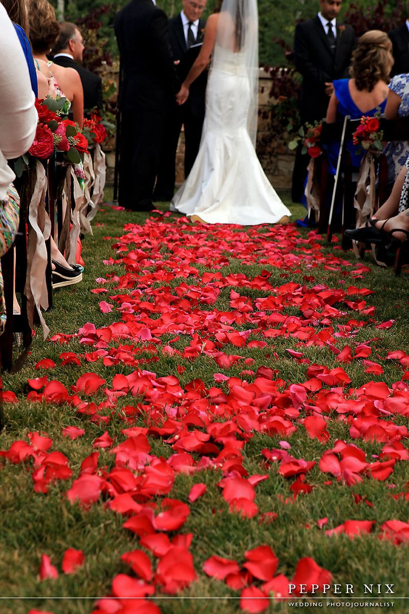 Red Carpet Of Red Rose Petals For Ceremony Aisle Weddings J Ho