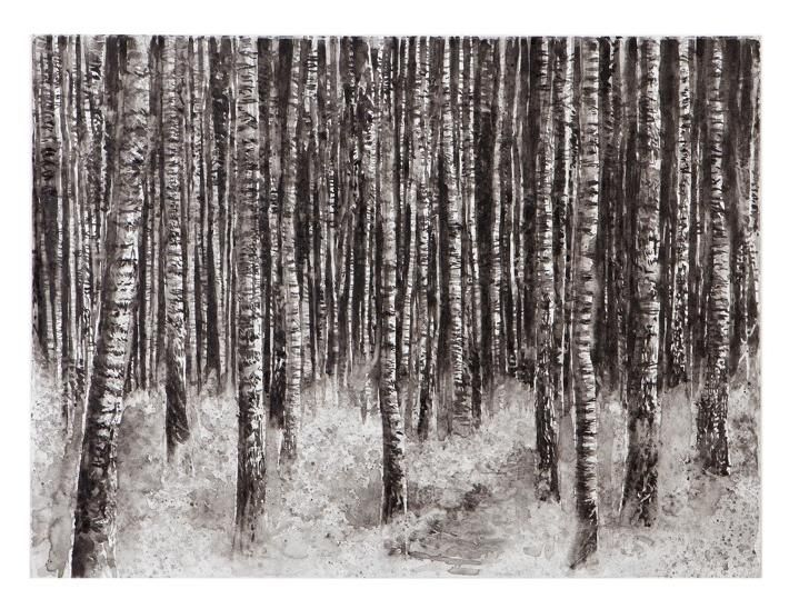 Image result for hans OP DE BEECK birches