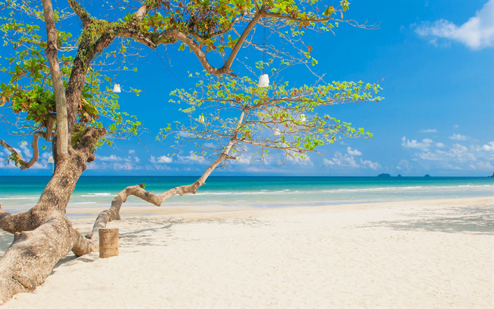 Download wallpapers tropical island, beach, romantic ...