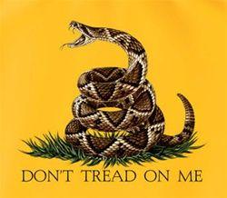 Don T Tread On Me Tattoo Gadsden Don T Tread On Me X Flag Tattoo
